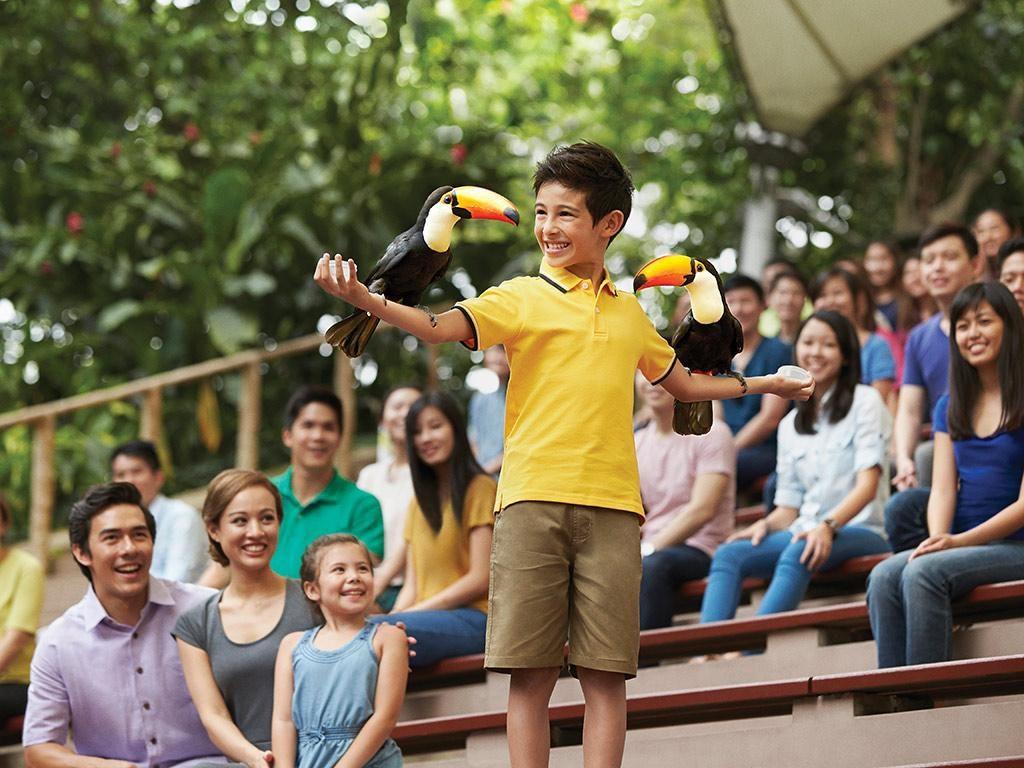 Feeding Session at Jurong Bird Park