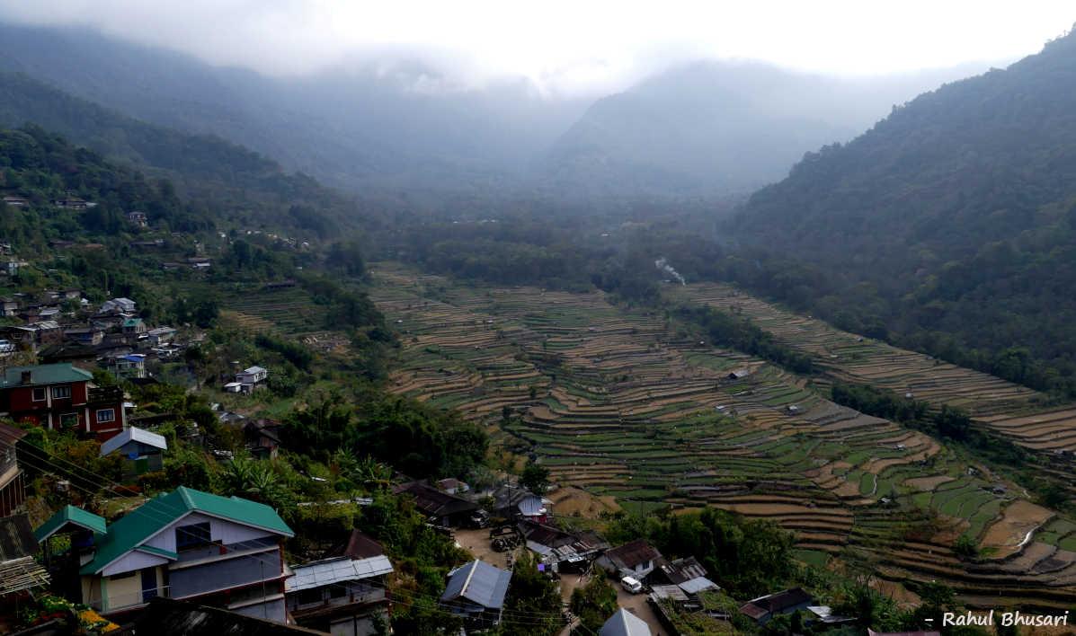 Terraced fields at Khonoma, Nagaland