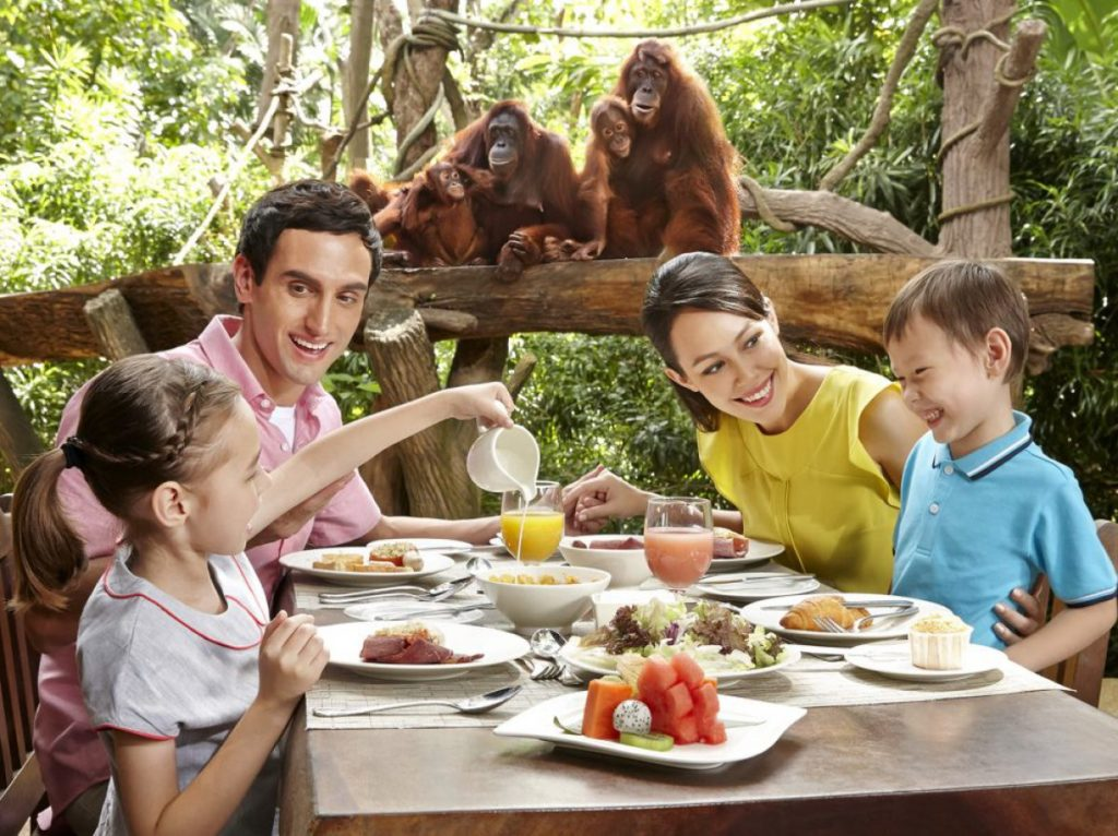 Breakfast with Orangutans at Singapore Zoo